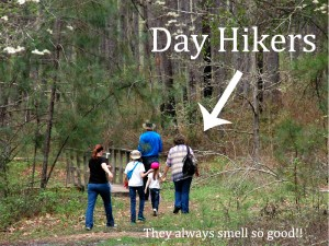 dayhikers