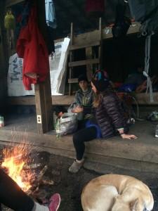 smokey shelter