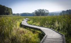 weak excuses appalachian trail