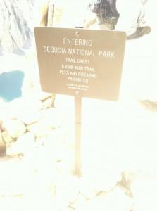Sequoia.sign