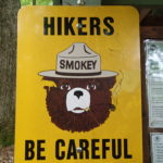Only you can prevent forest fires!