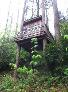 The treehouse at Kincora Hiking Hostel. (Photo courtesy of Clark Lovelady)