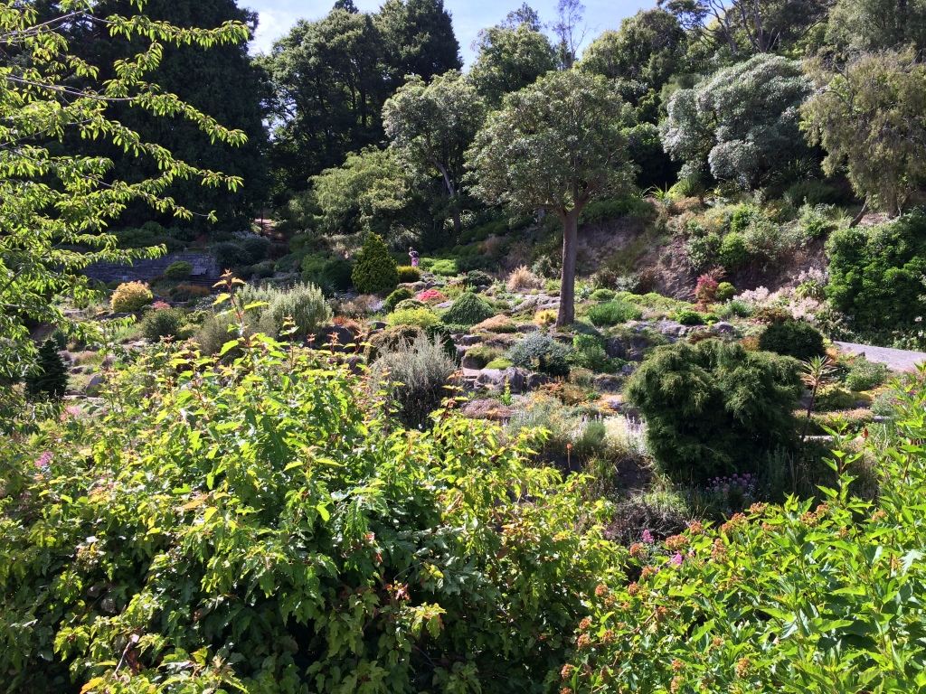 Dunedin's Botanical Gardens are beautiful!