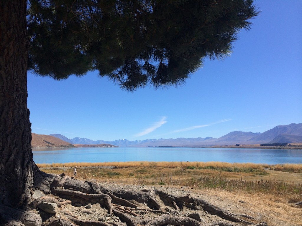 Lake Tekapo in all it's beauty