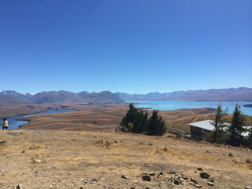 View of the Lake Tekapo region from the top of Mount John.