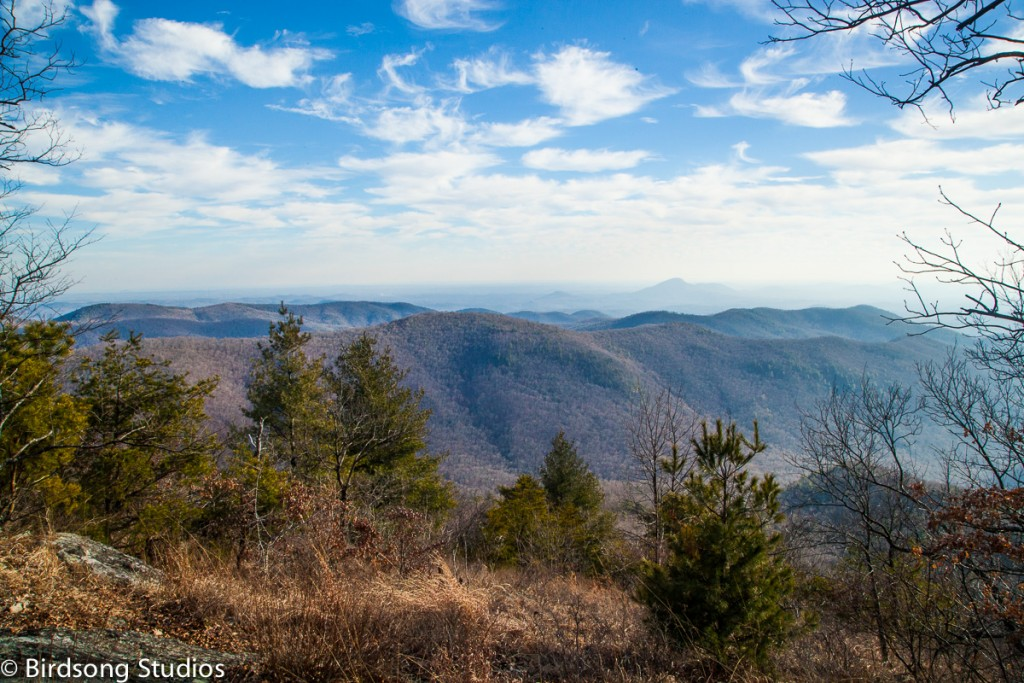 Indian Grave Gap to Unicoi was a really cool little section including Rocky Mountain. I really enjoyed walking on the ridgeline and the winter views.