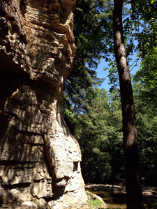 Honeycomb Rock, Pine Hills Nature Preserve