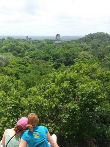 Tikal Mayan ruins in Guatemala. This team saw some amazing sights!