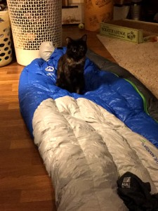 Big Agnes Bellyache 17 degree down bag. Cat not included.