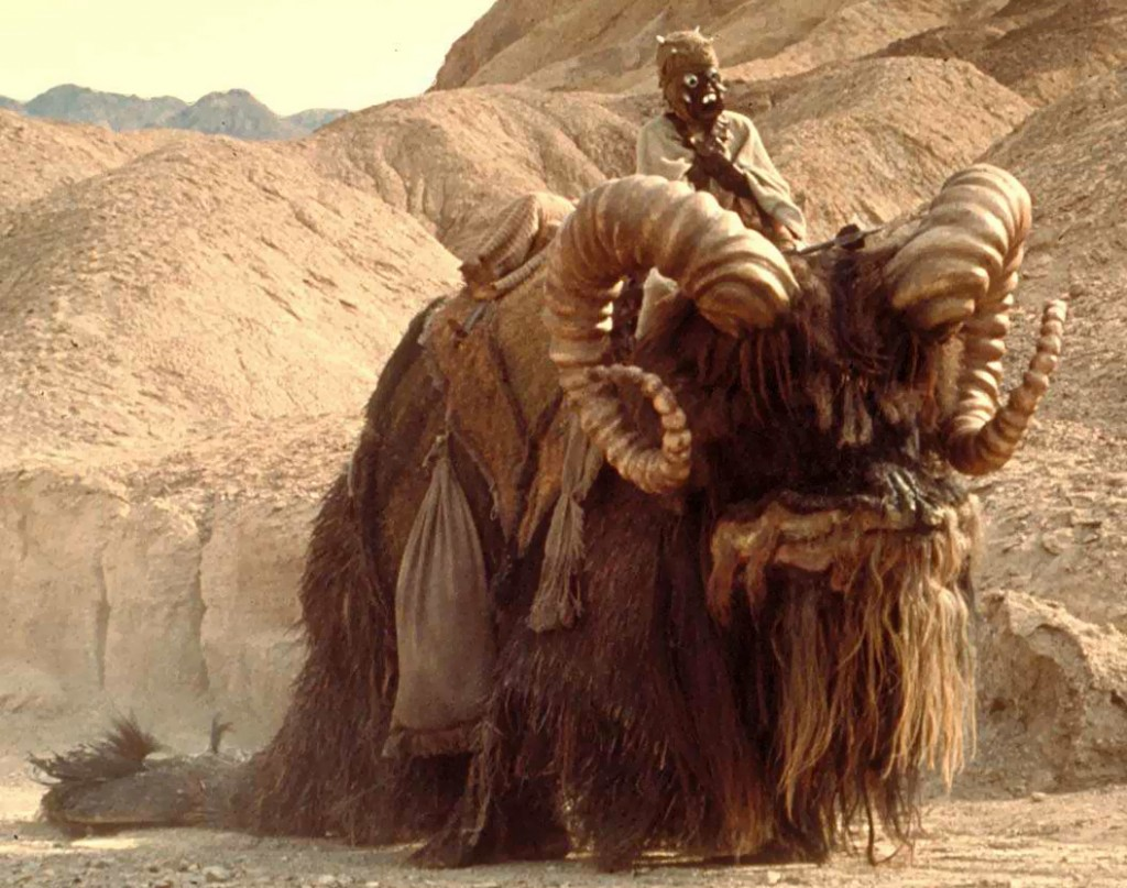 Who wouldn't want to ride off on one of these? Image from Wookiepedia.