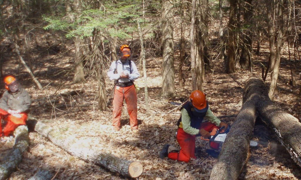 Chainsaw recertification class