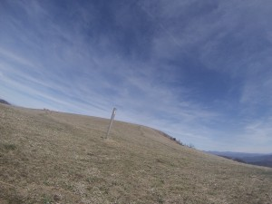 Max Patch, otherwise known as my favorite place on Earth