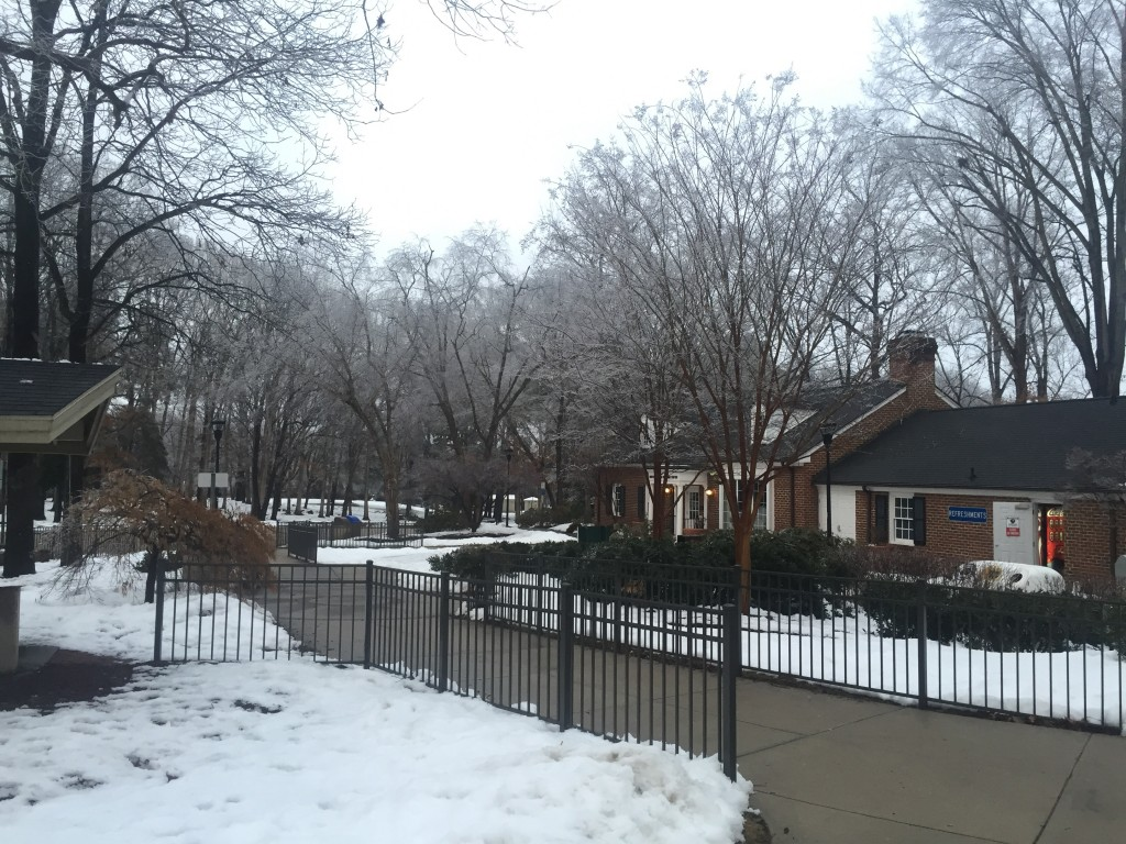 The snow greeted us in North Carolina. This is not what North Carolina is supposed to look like.