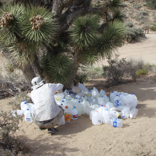 Water cache at Bird Spring Pass Pacific Crest Trail