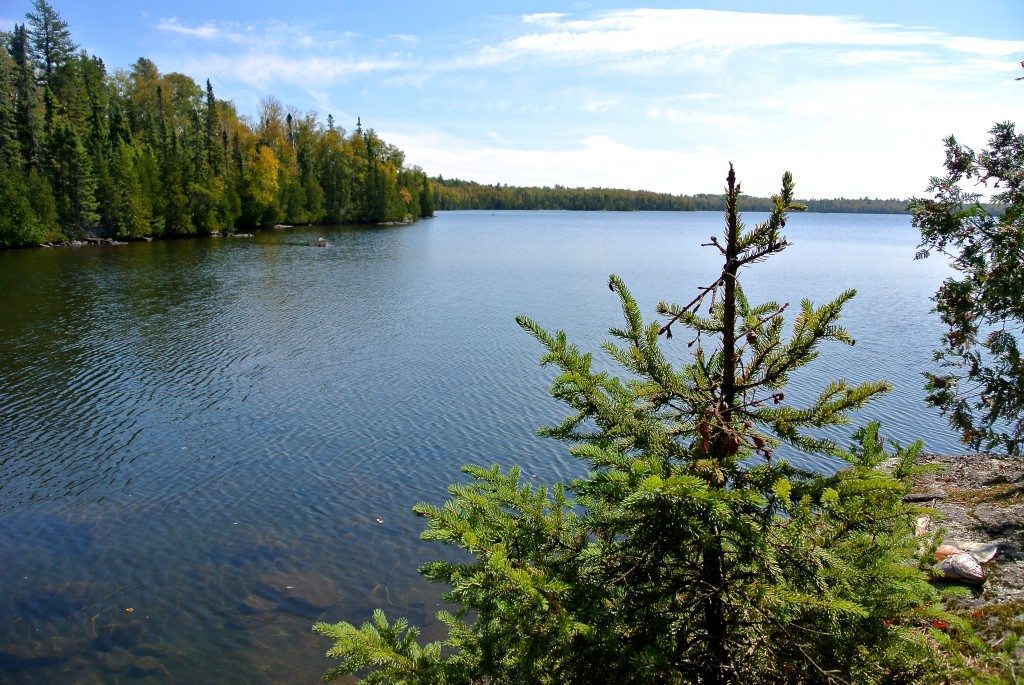 The beauty of the BWCA