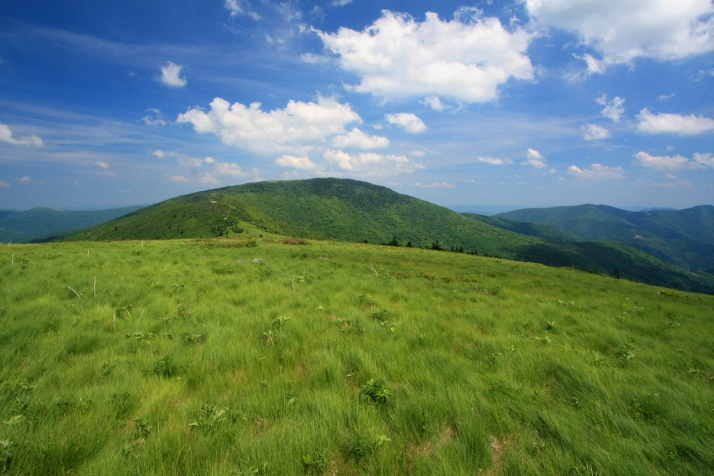 View of Grassy Ridge Bald from Round Bald in the Roan Highlands. Photo courtesy of Alan Cressler.