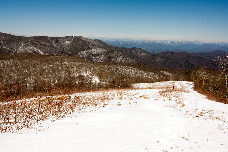 Siler Bald Summit