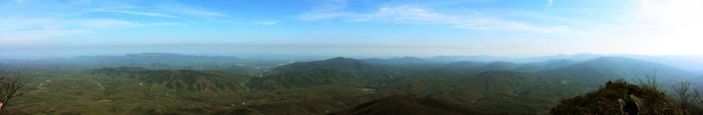 Panoramic view from the Mt. Cammerer fire tower.