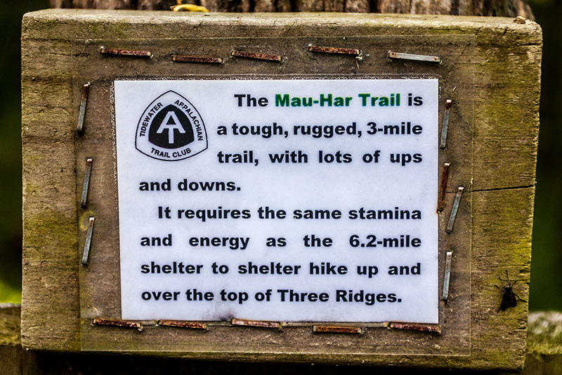 It's worth noting that in 2013 when this photo was taken, this warning only existed at the northern end of the Mau-Har Trail at Maupin Field Shelter. The sign post at the southern intersection was only marked with a faded skull and crossbones...