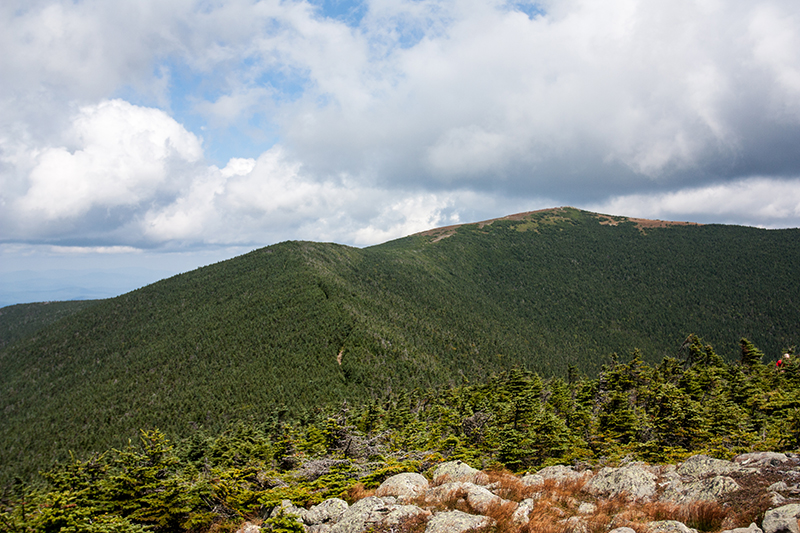 Mt. Moosilauke: South Peak