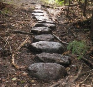 Step Stones. Photo, Bangor Daily News