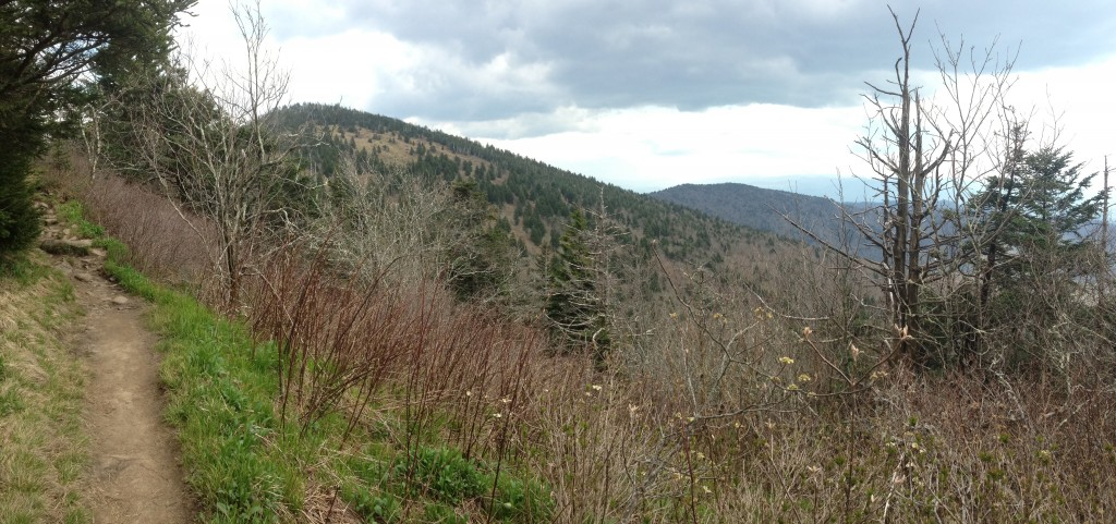 The views and the spruce/fir forests on the trail up to Clingmans were so beautiful I amost forgot we were climbing... Almost.