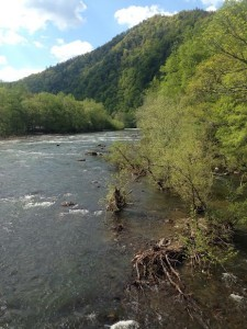 Views of the Nolichucky River from Erwin, TN.