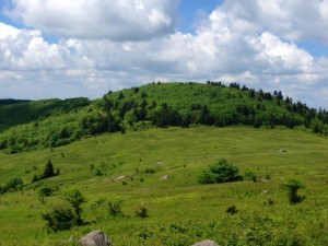 The Grayson Highlands