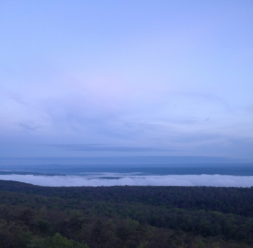 Fog clearing before the sunrise
