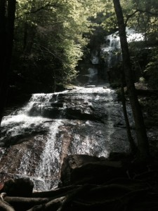 Jones Falls. Totally worth the extra walk.