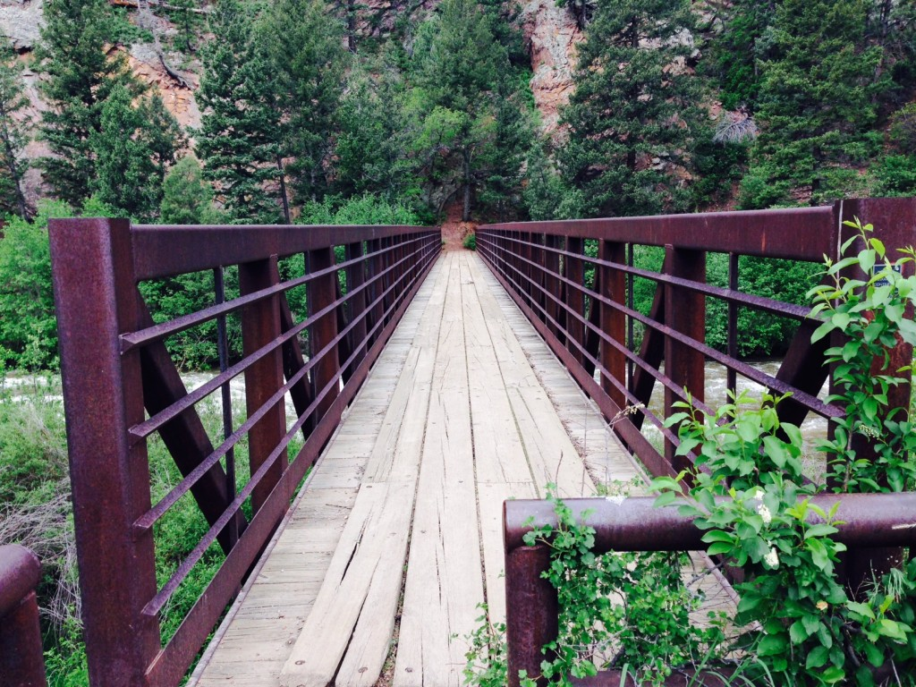 Obligatory Colorado Trail Bridge