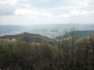 The view from Rich Mountain Lookout Tower (Mile 282.7)