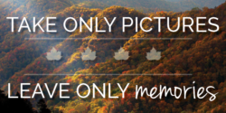 Take Only Pictures, Leave Only Memories