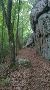 Tinker ridge