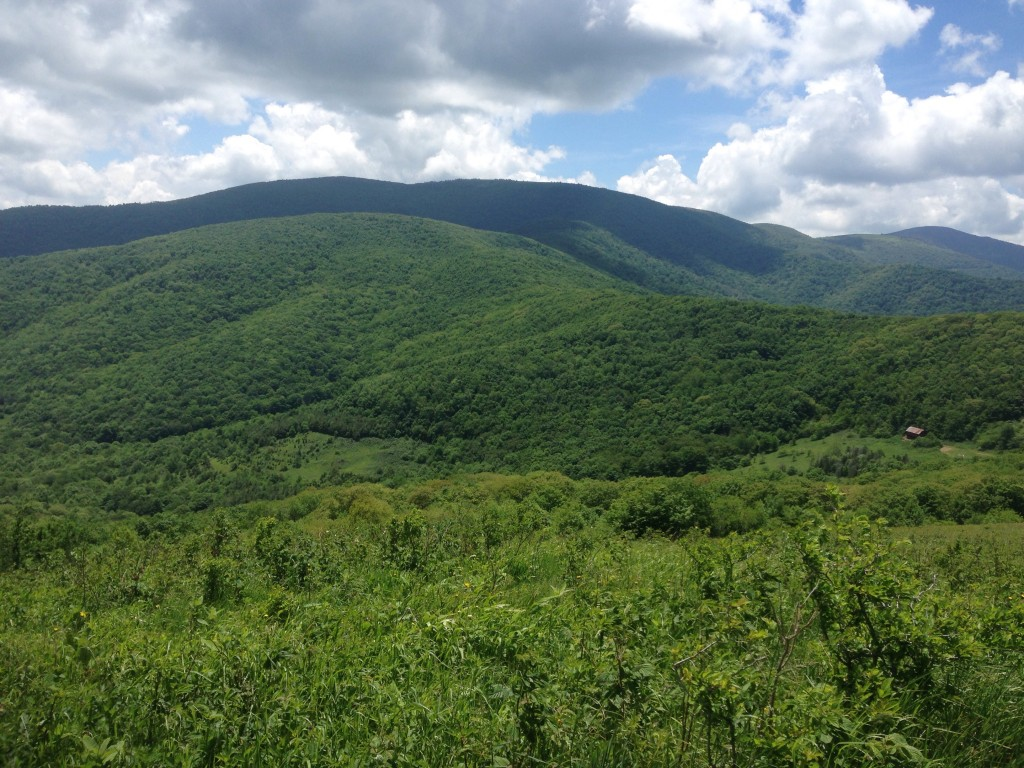 The Roan Highlands are one of my favorite spots so far.