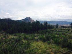 segment 2 colorado trail