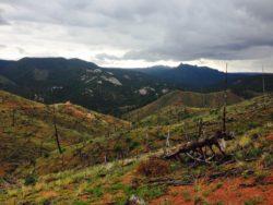 segment 2 colorado trail view