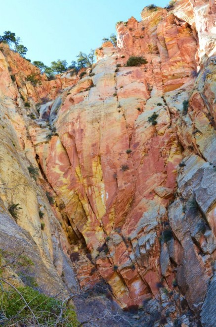 Rock wall hiking up to Observation Point in Zion.