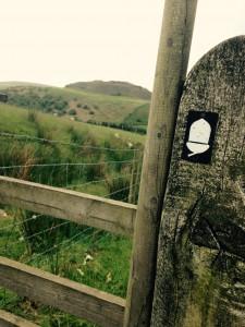 Trail marker is an acorn