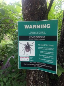 Lyme is real