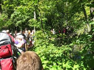 Line 'em up.  Photo, openjourney.com