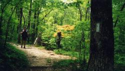 sustainable future Appalachian Trail