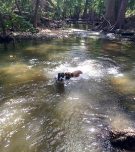 Andi and Leonard love the water