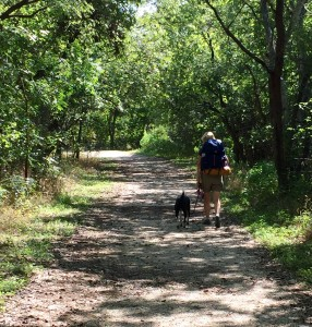 McKinney Falls Hike