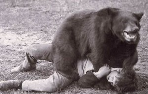 A perfect example of hiker asserting his dominance over a bear. He has him right where he wants hi,m. Image Source: Google Images
