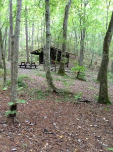 Lower Shoals Shelter