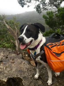 Happy Girl on Morning Hike