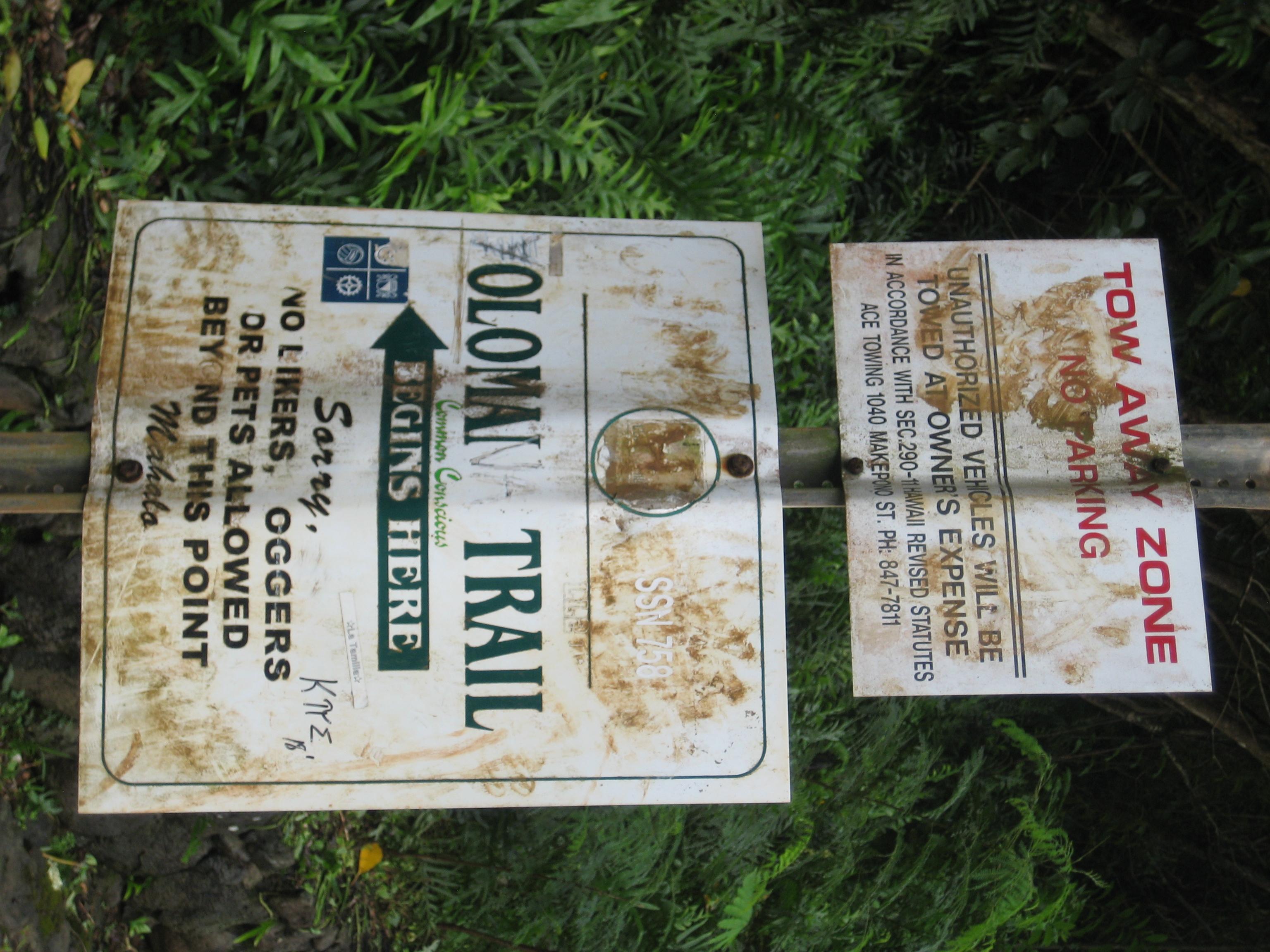 Hawai'i Hike of Death: Olomana - The Trek