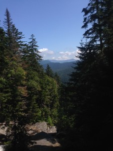 The view while hiking up Mt. Moosilauke.