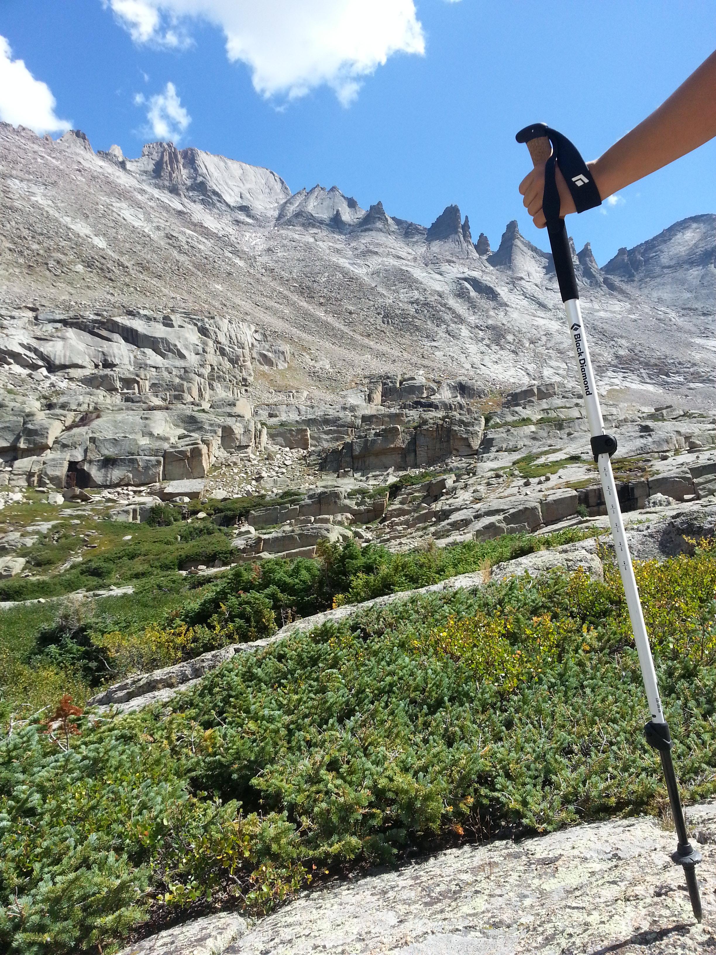 Review Black Diamond S Alpine Carbon Cork Trekking Poles